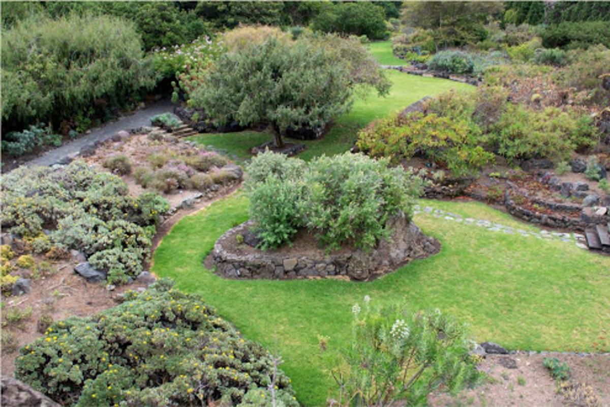 Káva a botanická záhrada