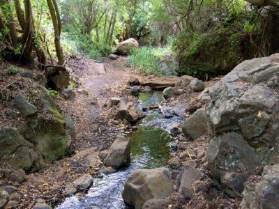 Cesta k vodopádom